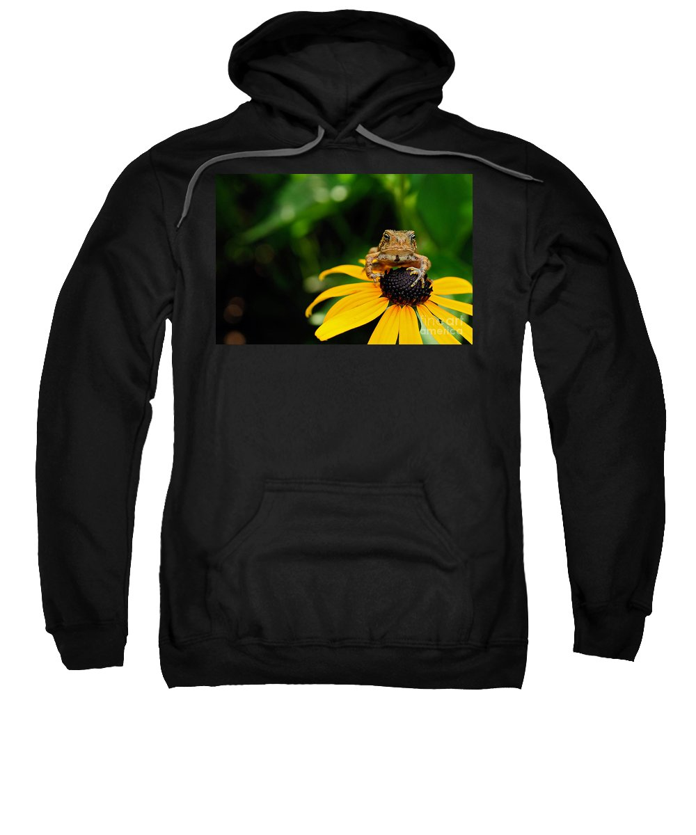 Toad Sweatshirt featuring the photograph The Harbinger by Lois Bryan