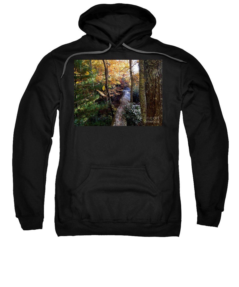 Harlan County Ky Photographs Sweatshirt featuring the photograph The Hidden Log Rock by Tammy Hyatt