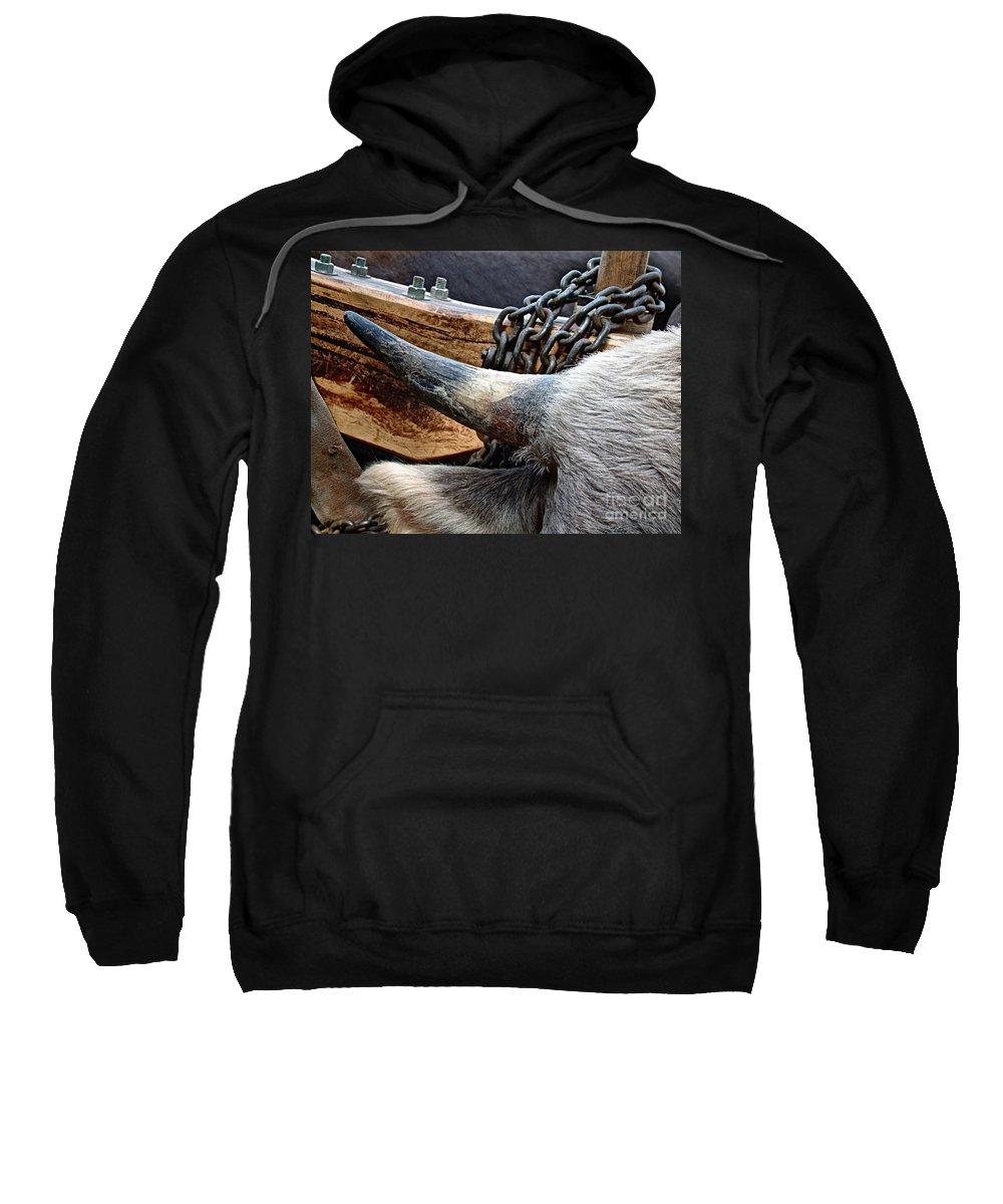 Animal Sweatshirt featuring the photograph The Horn Of The Beast by RC DeWinter