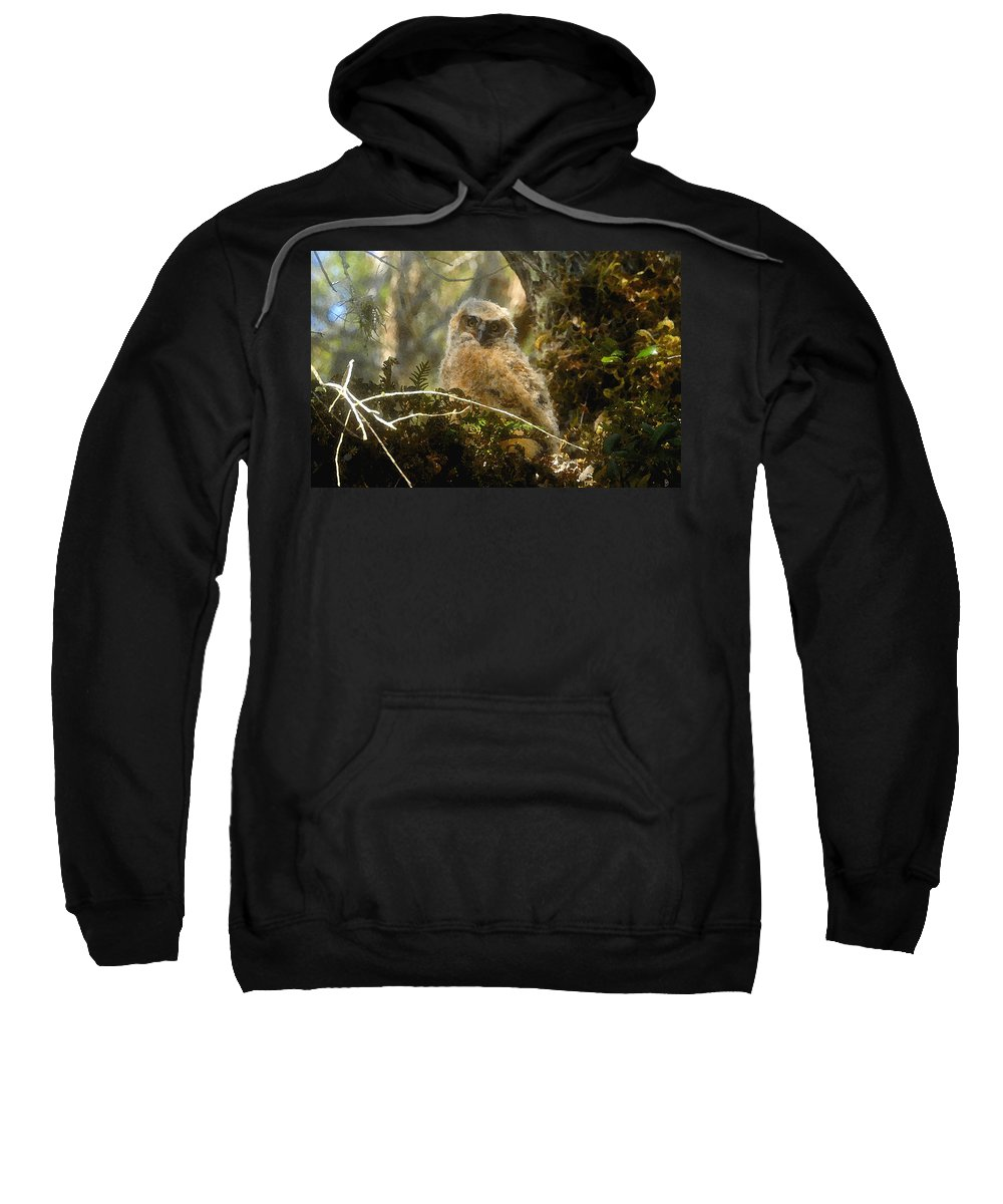 Baby Owl Sweatshirt featuring the painting The Look Of Innocence by David Lee Thompson
