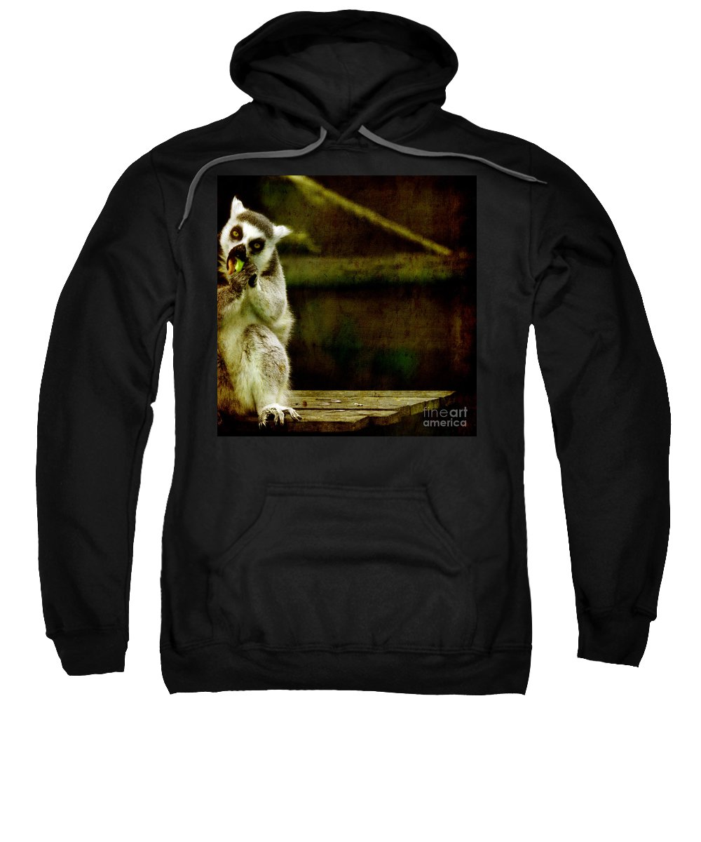 Lori Sweatshirt featuring the photograph The Lori by Angel Ciesniarska
