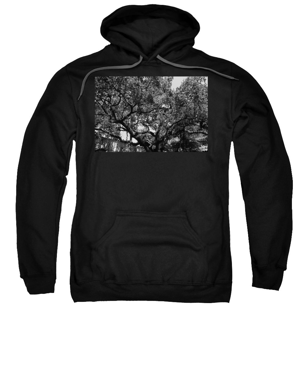 Black And White Sweatshirt featuring the photograph The Monastery Tree by Rob Hans