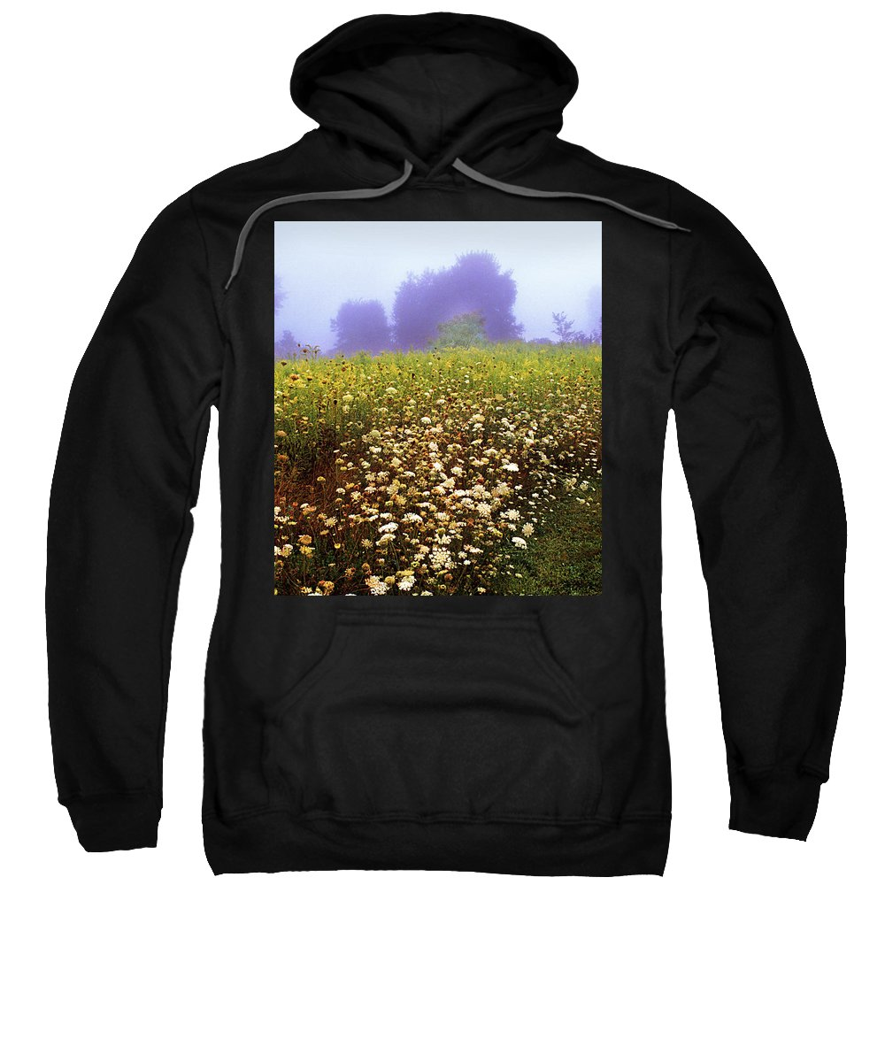 New York State Sweatshirt featuring the photograph The Secret Garden by Yuri Lev