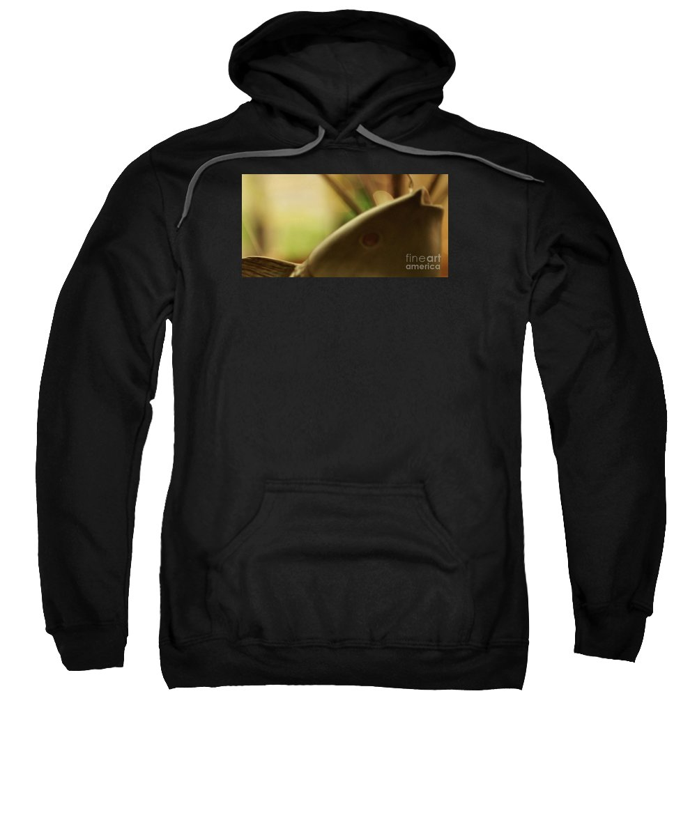 Abstract Sweatshirt featuring the photograph The Storyteller by Linda Shafer