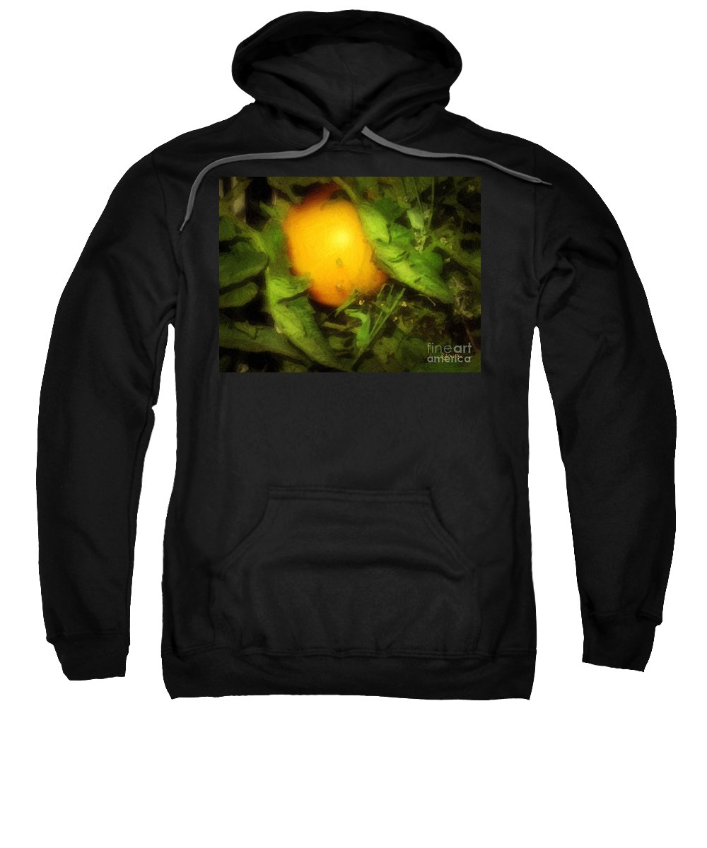 Garden Sweatshirt featuring the painting The Sun Is Sleeping In The Garden by RC DeWinter