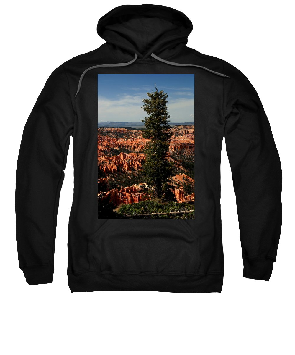 Bryce Canyon Sweatshirt featuring the photograph The Tree In Bryce Canyon by Susanne Van Hulst