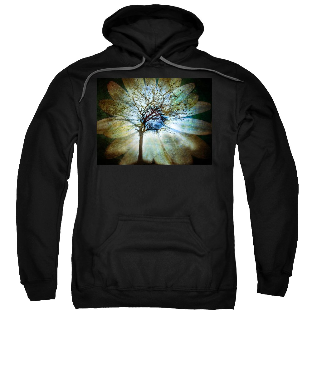 Trees Sweatshirt featuring the photograph The Truth Of Trees by Tara Turner