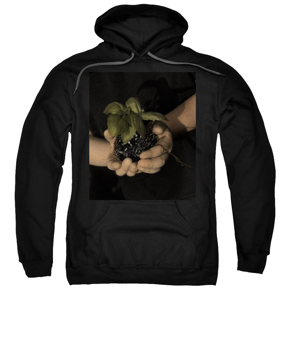 The Twelve Gifts Of Birth Sweatshirt featuring the photograph The Twelve Gifts Of Birth - Talent 2 by Jill Reger