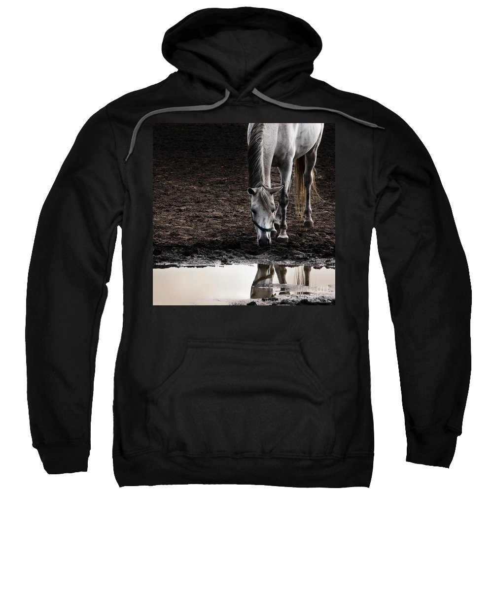 Horse Sweatshirt featuring the photograph The Water Reflection by Angel Ciesniarska