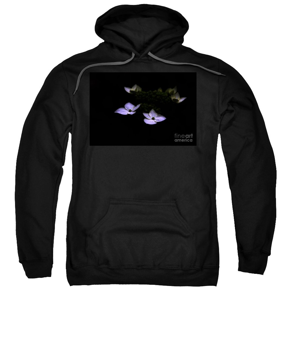 Hydrangea Sweatshirt featuring the photograph This Little Light Of Mine by Amanda Barcon