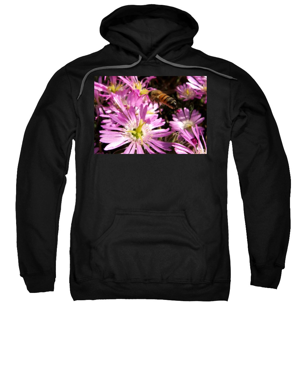Bee Sweatshirt featuring the photograph This Will Do by Chris Brannen
