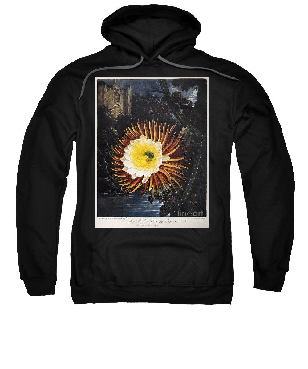1800 Sweatshirt featuring the photograph Thornton: Cereus by Granger