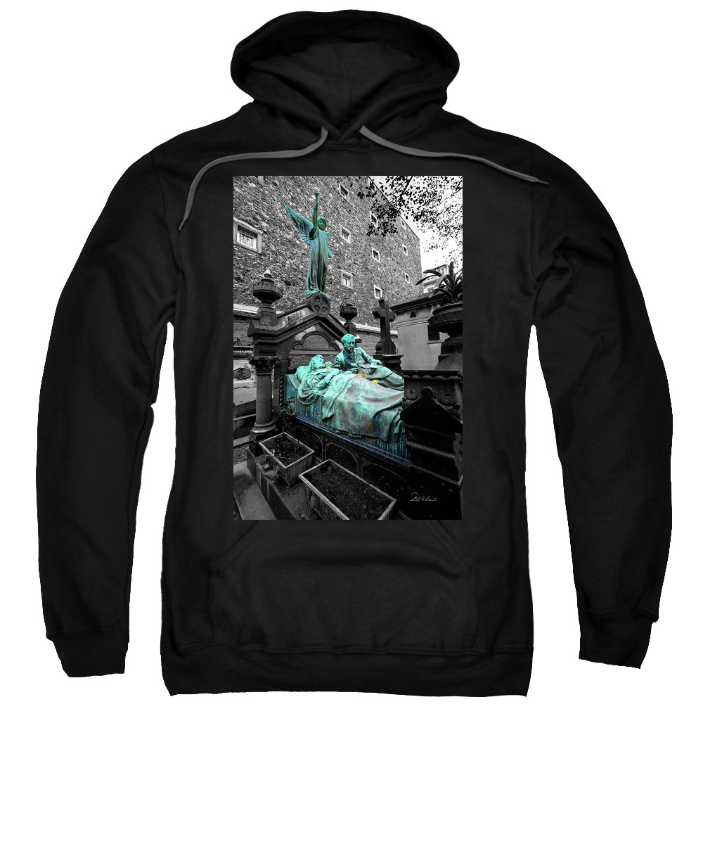 Photography Sweatshirt featuring the photograph Those Darn Neighbors by Frederic A Reinecke