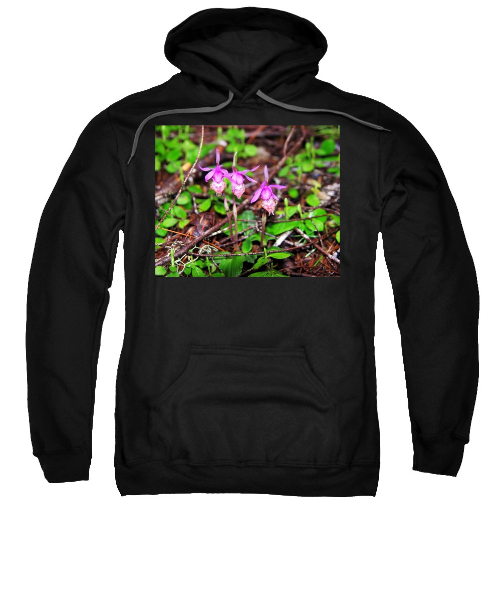 Flowers Sweatshirt featuring the photograph Three Amigos by Jeff Swan