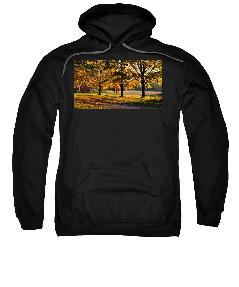 Fall Sweatshirt featuring the photograph Three Sisters by Tim Nyberg