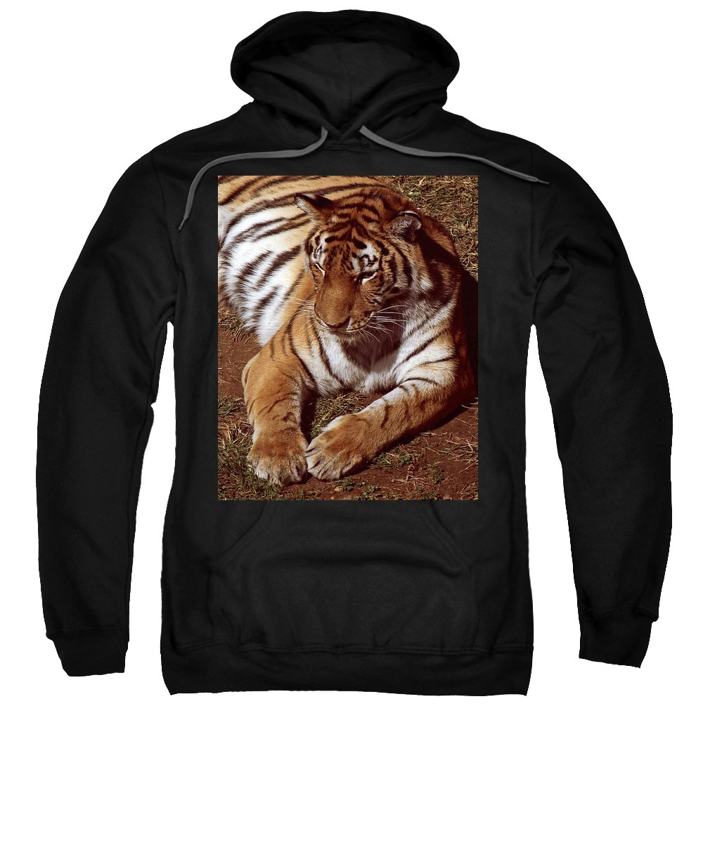 Animal Sweatshirt featuring the photograph Tiger I by Gary Adkins