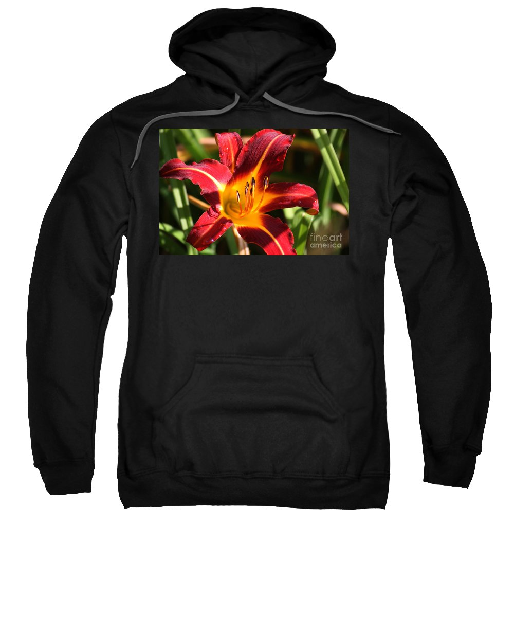 Tiger Lily Sweatshirt featuring the photograph Tiger Lily0064 by Gary Gingrich Galleries