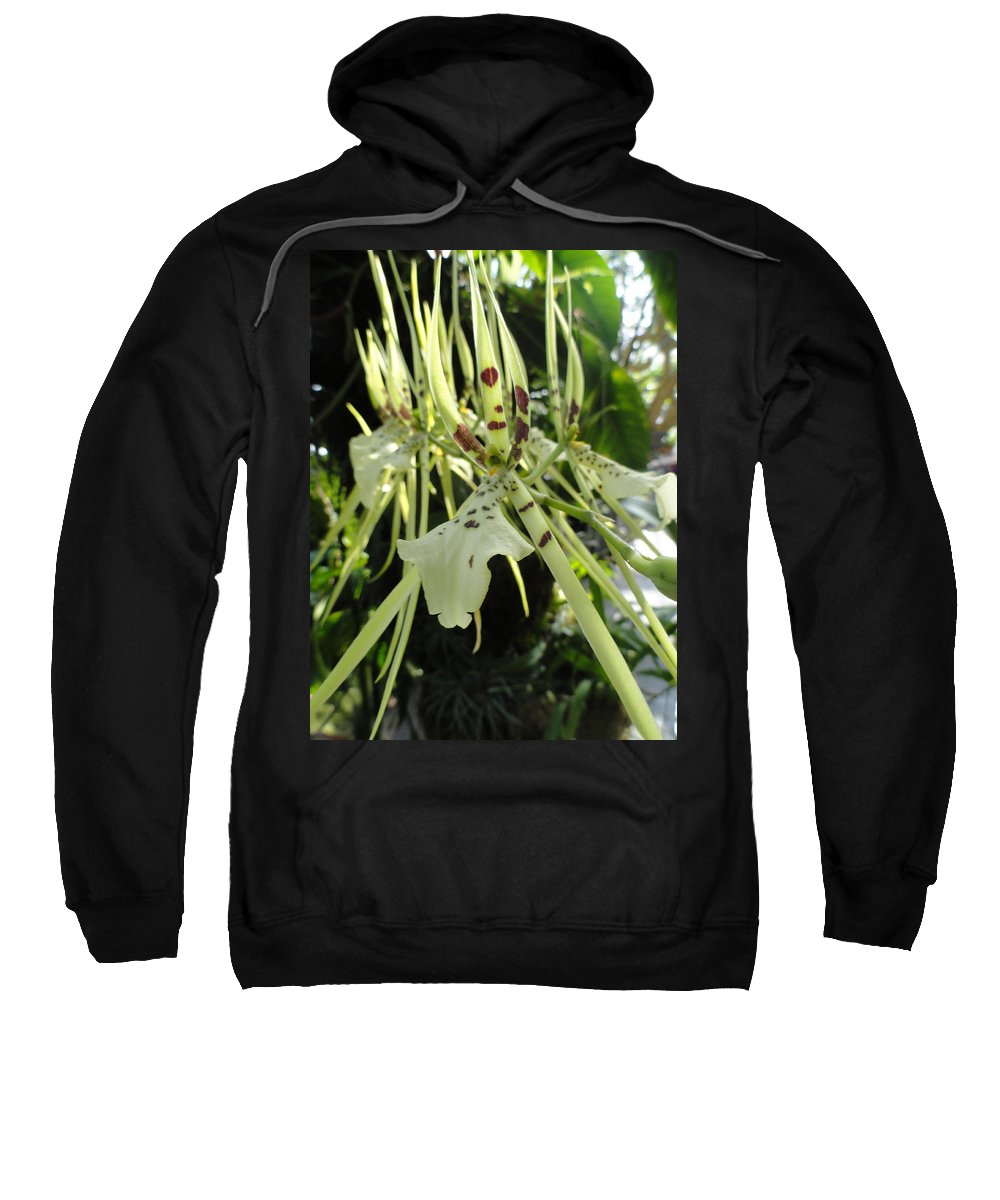 Orchid Sweatshirt featuring the photograph Tiger Tongue by Trish Hale