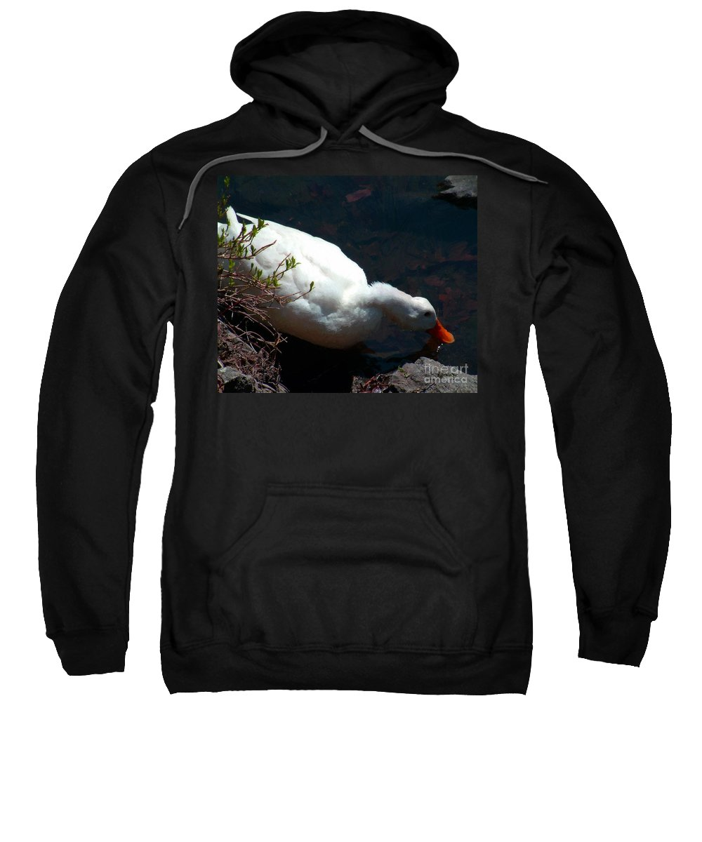 Duck Sweatshirt featuring the painting Time For A Drink by RC DeWinter