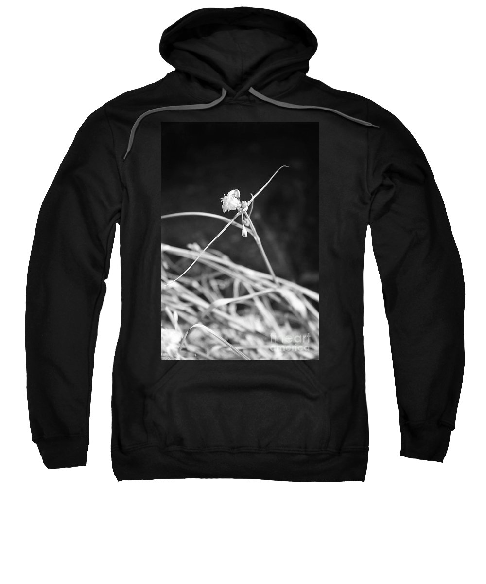 Wildflowers Sweatshirt featuring the photograph Tiny Ballerina by Kathy McClure