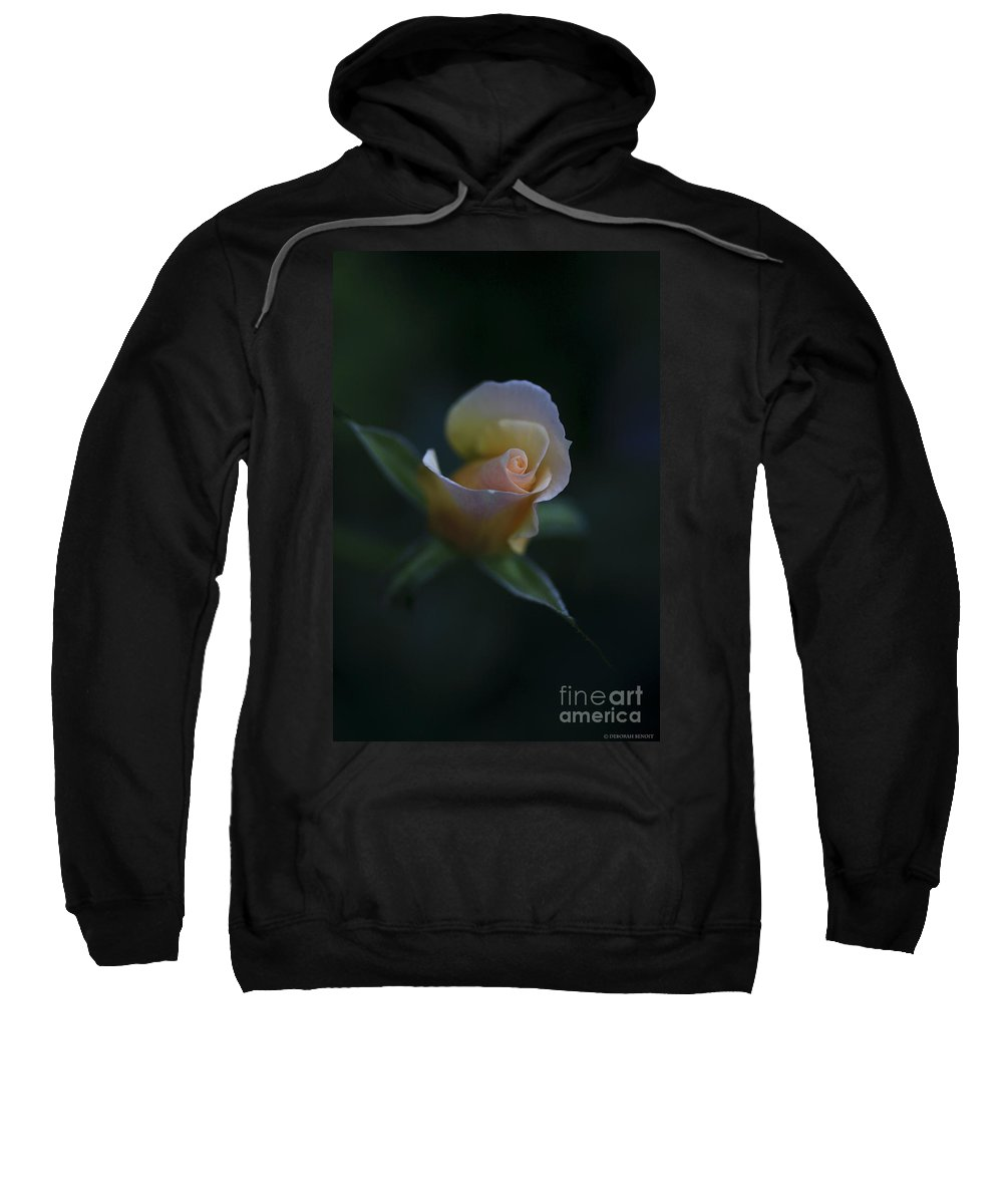 Flower Sweatshirt featuring the photograph Tiny Pink Rosebud by Deborah Benoit