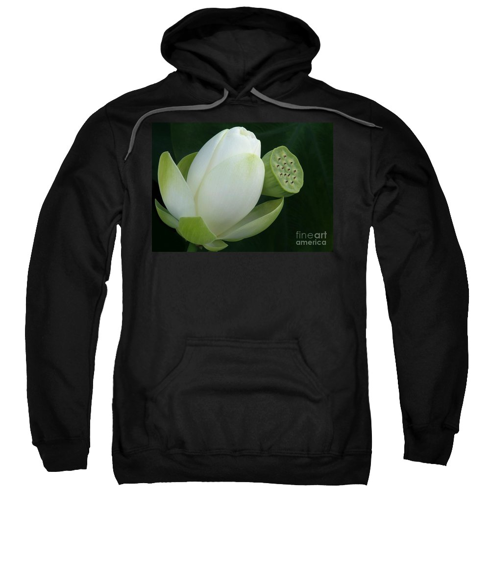 Lotus Sweatshirt featuring the photograph Today And Yesterday by Sabrina L Ryan