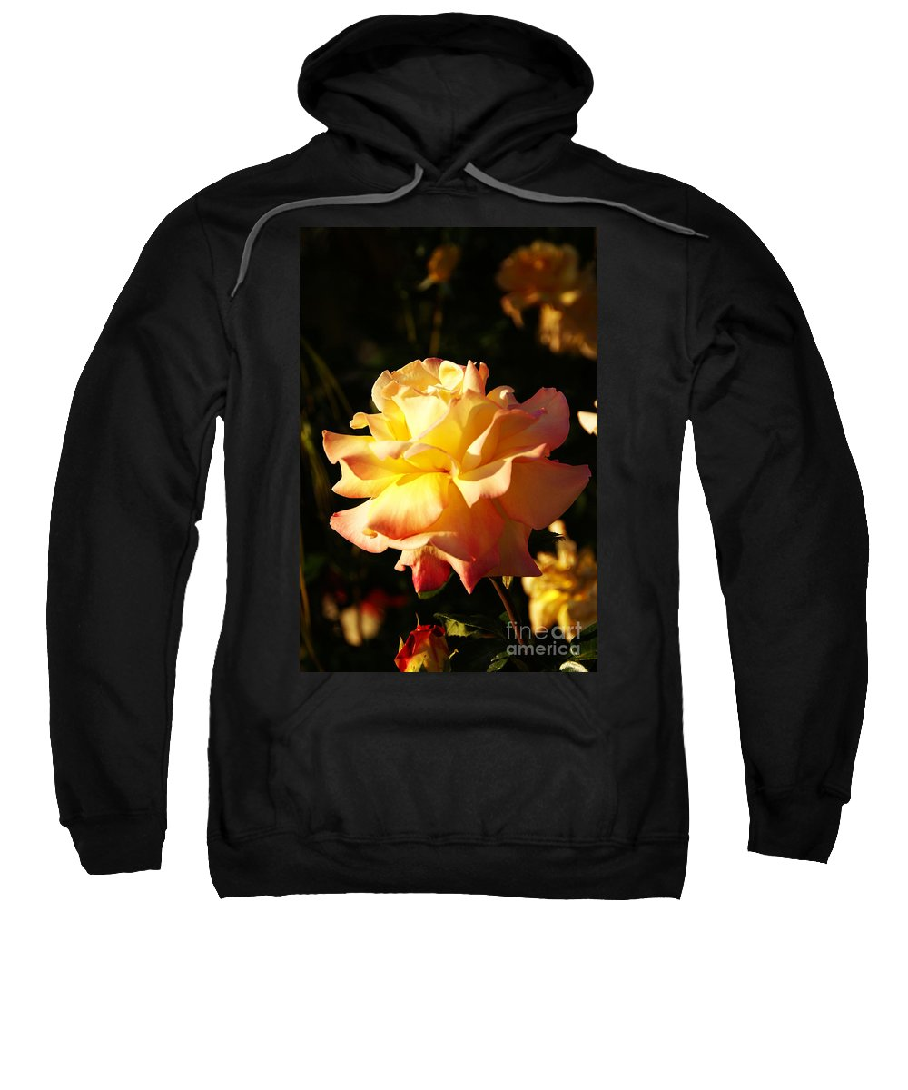 Rose Sweatshirt featuring the photograph Together We Stand by Linda Shafer