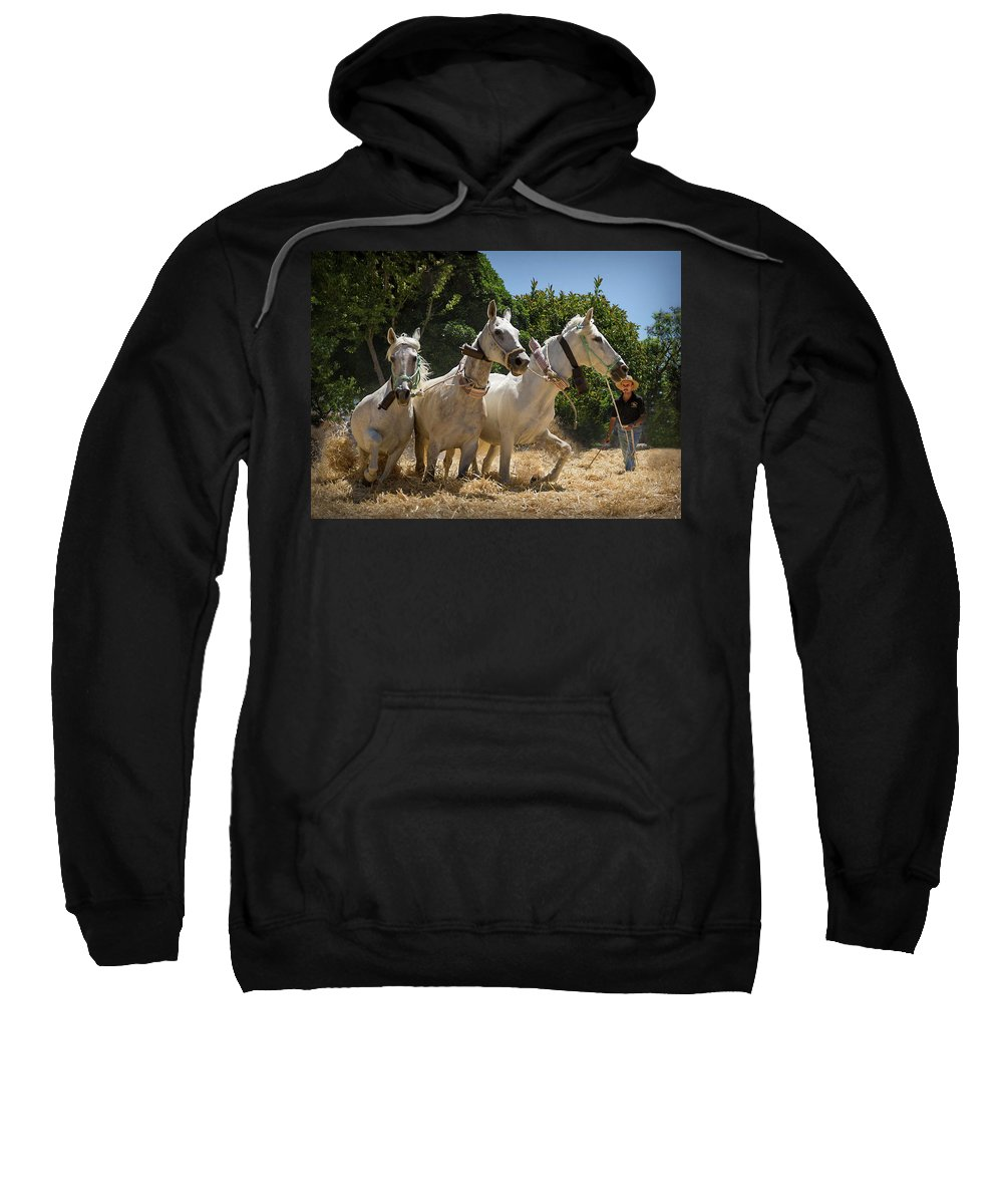 Agricultural Sweatshirt featuring the photograph Traditional Spanish Threshing by Peter Hayward Photographer
