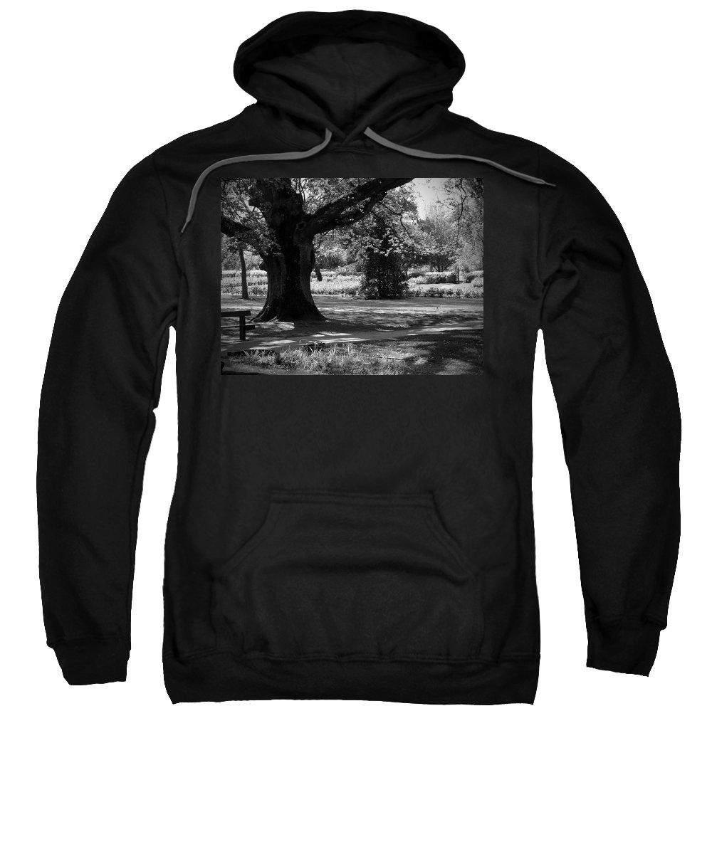 Irish Sweatshirt featuring the photograph Tralee Town Park Ireland by Teresa Mucha