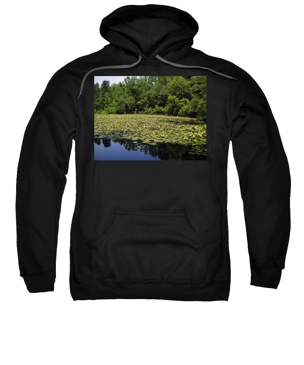 Tranquility Sweatshirt featuring the photograph Tranquility by Flavia Westerwelle