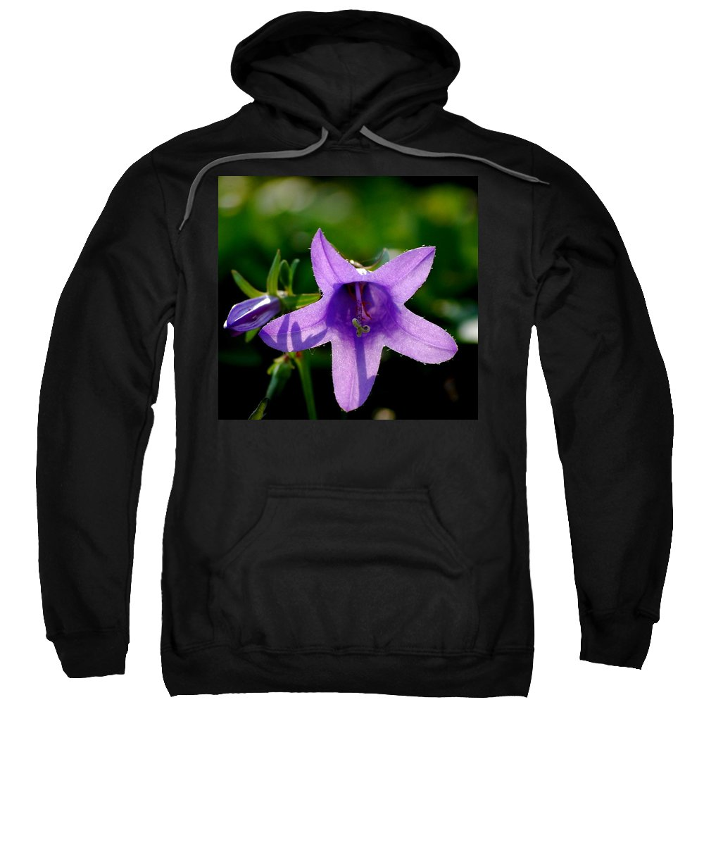 Digital Photography Sweatshirt featuring the digital art Translucent by David Lane