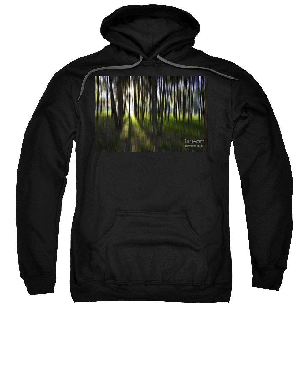 Trees Abstract Tree Lines Forest Wood Sweatshirt featuring the photograph Tree Abstract by Sheila Smart Fine Art Photography