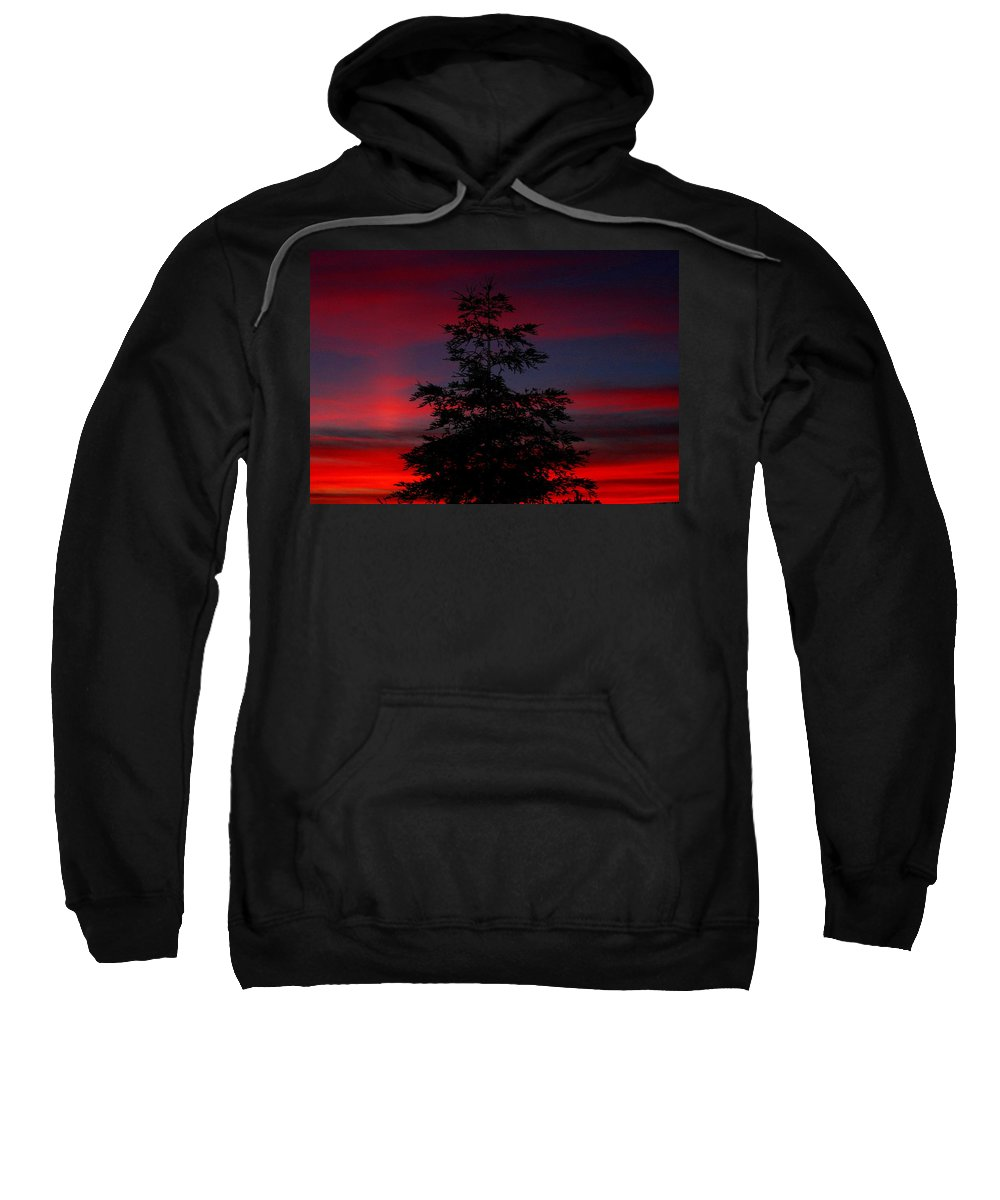 Tree Sweatshirt featuring the photograph Tree At Sunset by Matthew Farmer