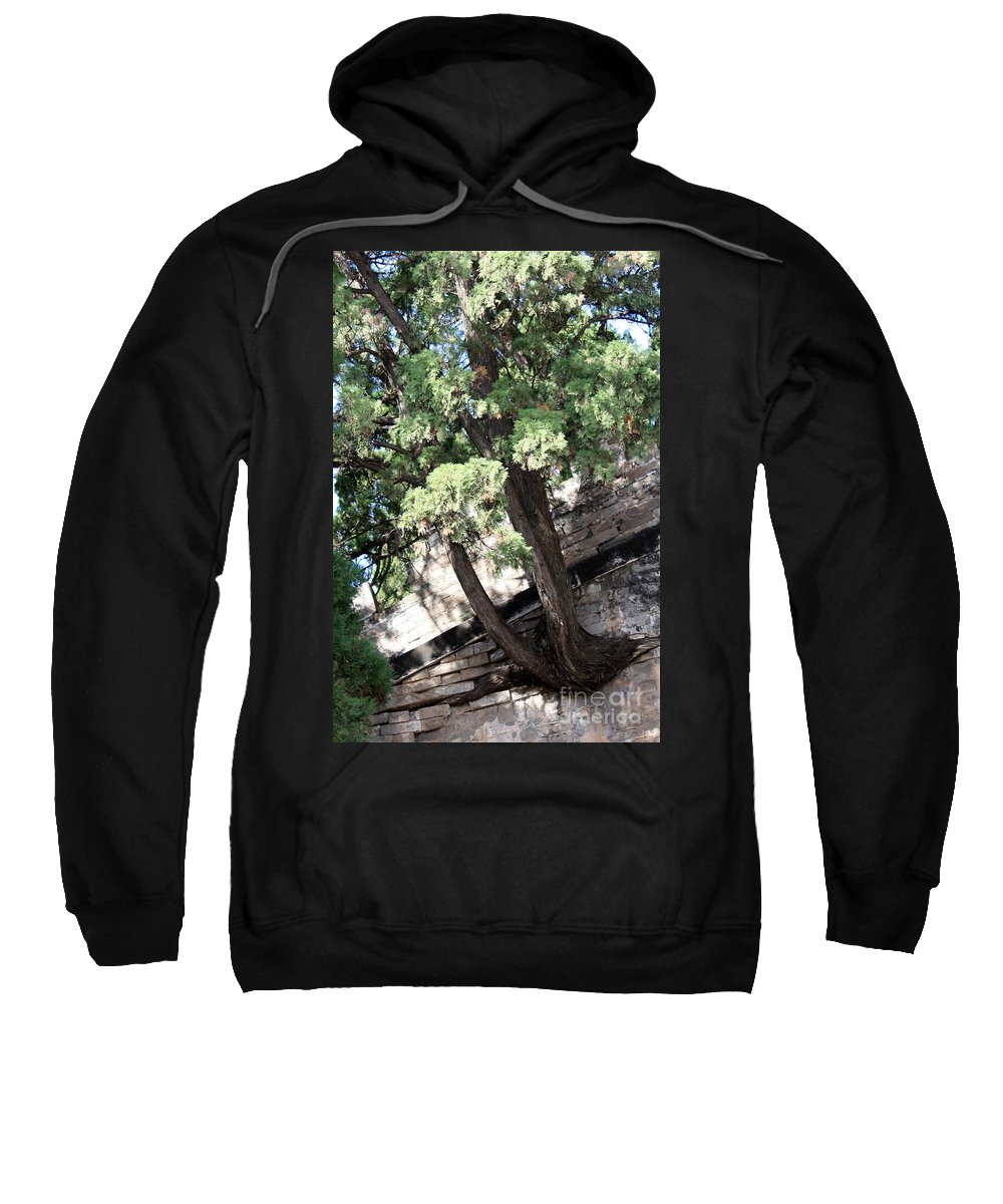 China Sweatshirt featuring the photograph Tree Growing Through Wall by Carol Groenen