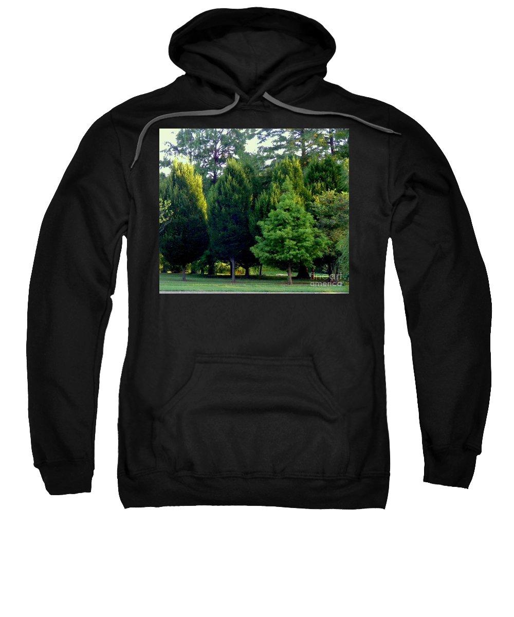 Photography Sweatshirt featuring the photograph Tree Personalities by Nancy Kane Chapman