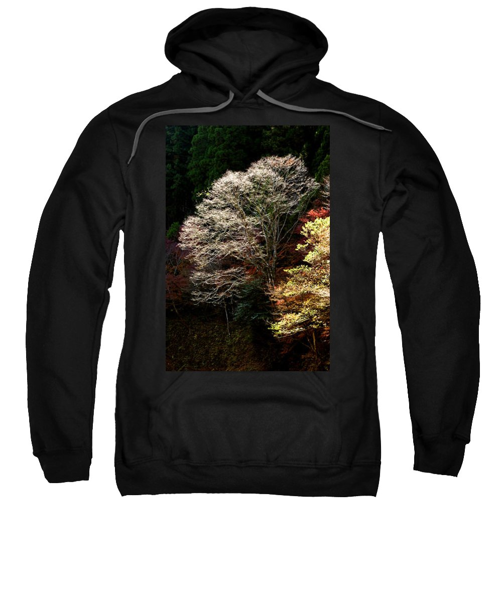 Trees Sweatshirt featuring the photograph Trees In Japan 11 by George Cabig