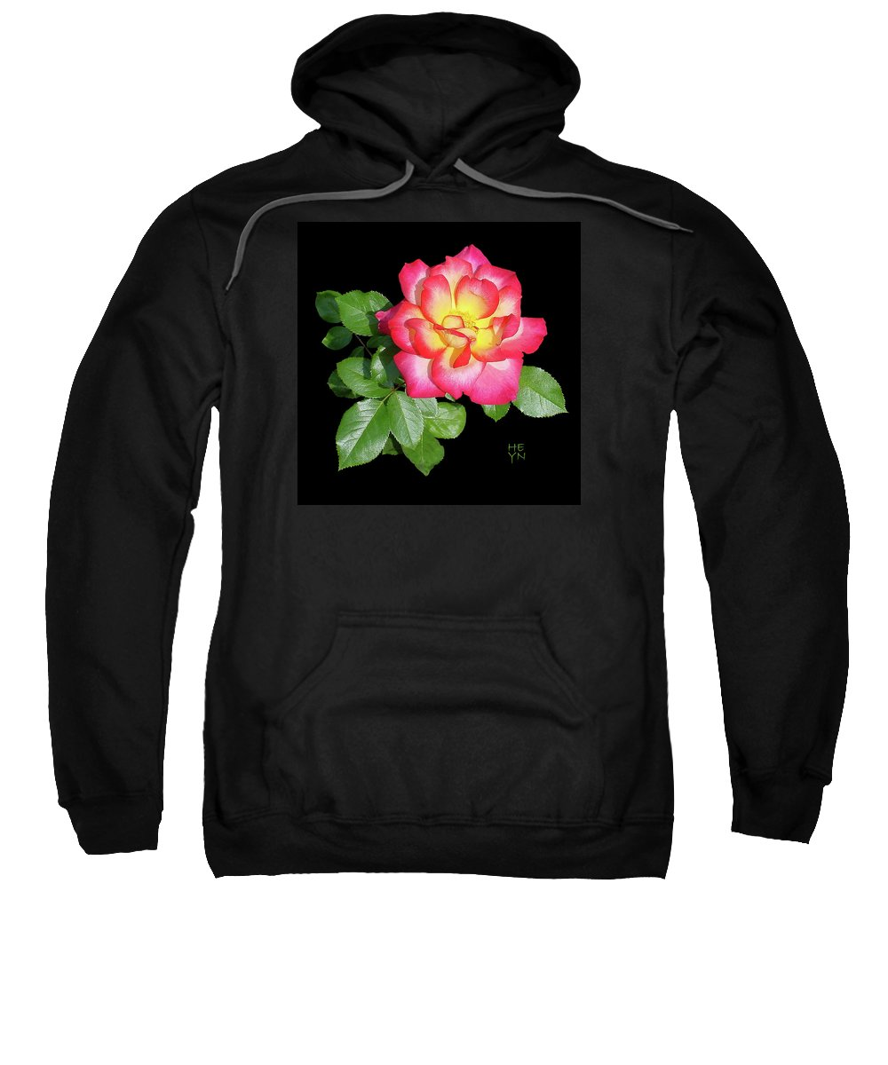Cutout Sweatshirt featuring the photograph Tri-color Pink Rose2 Cutout by Shirley Heyn