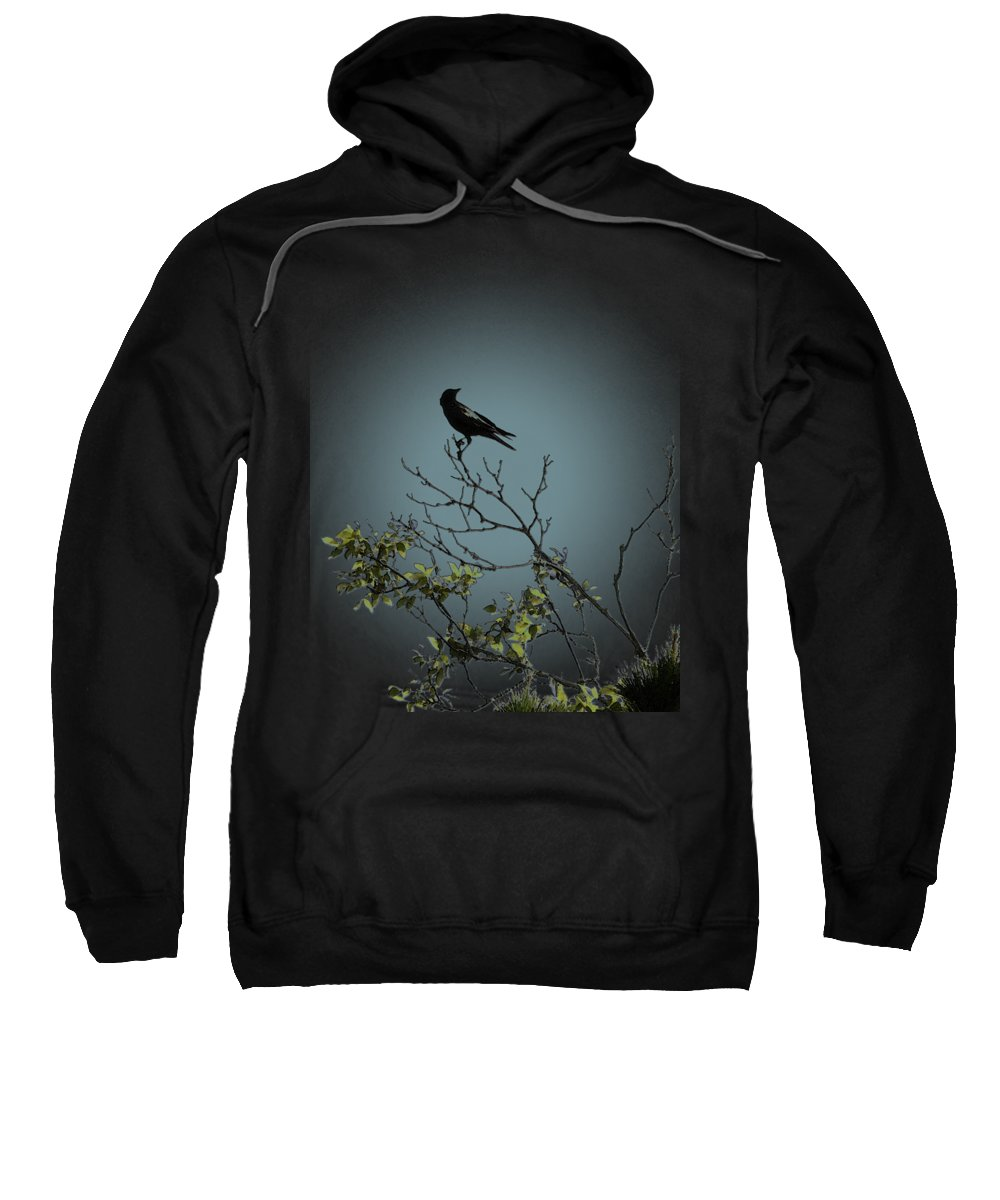 Crow Sweatshirt featuring the photograph Trickster Watch by Dora Hembree