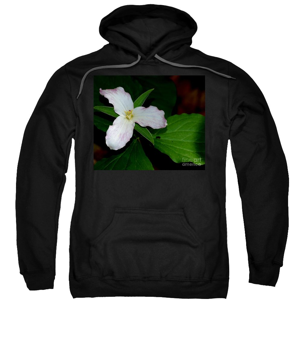 Landscape Sweatshirt featuring the photograph Trillium by David Lane