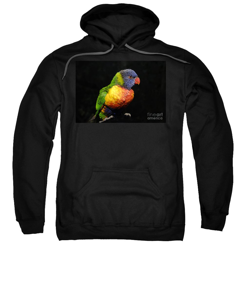 Tropical Sweatshirt featuring the photograph Tropical Colors by David Lee Thompson