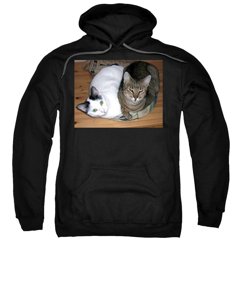 Cat Sweatshirt featuring the photograph True Love by Valerie Ornstein