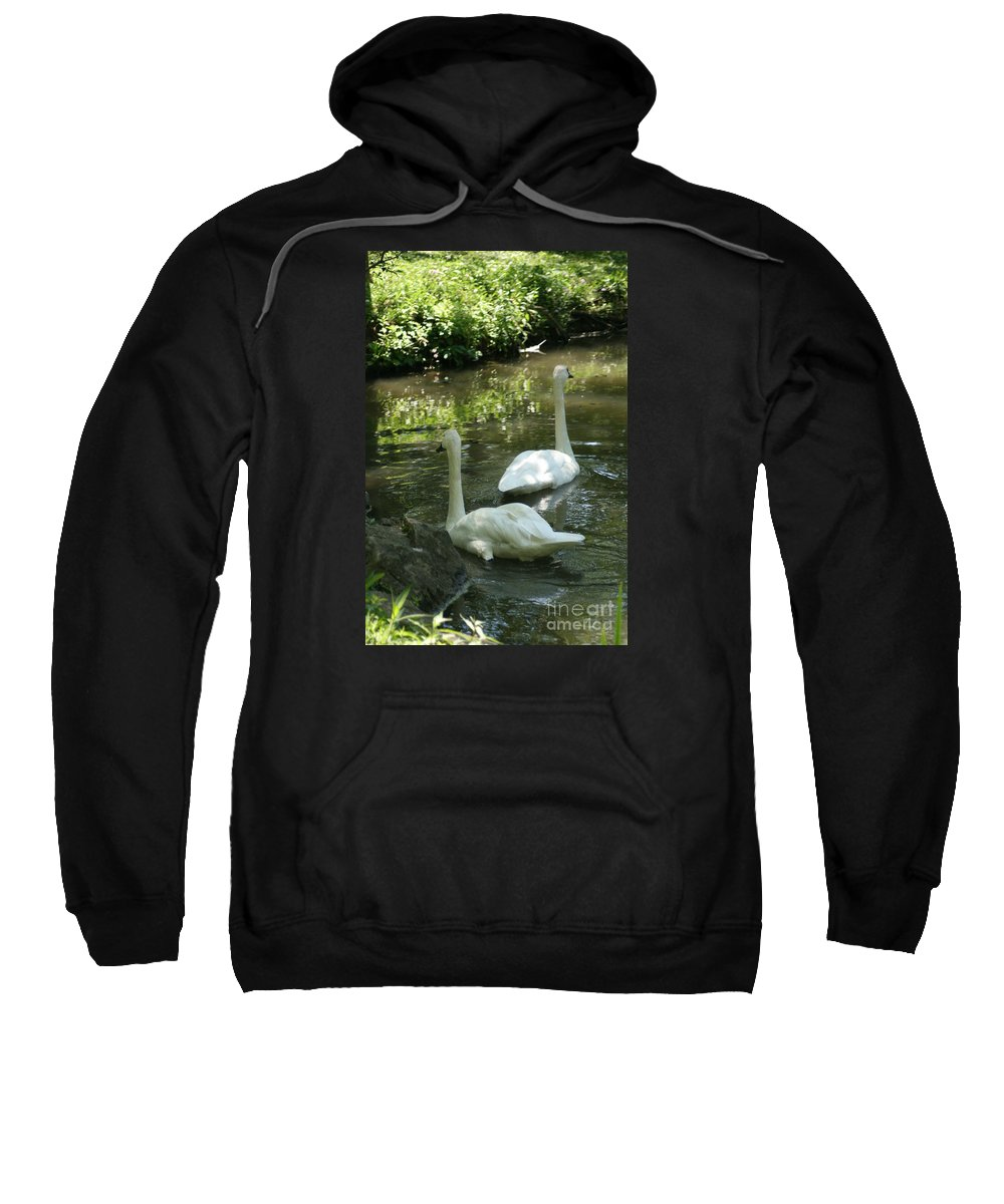 Water Sweatshirt featuring the photograph Trumpeter Swans by Dawn Downour