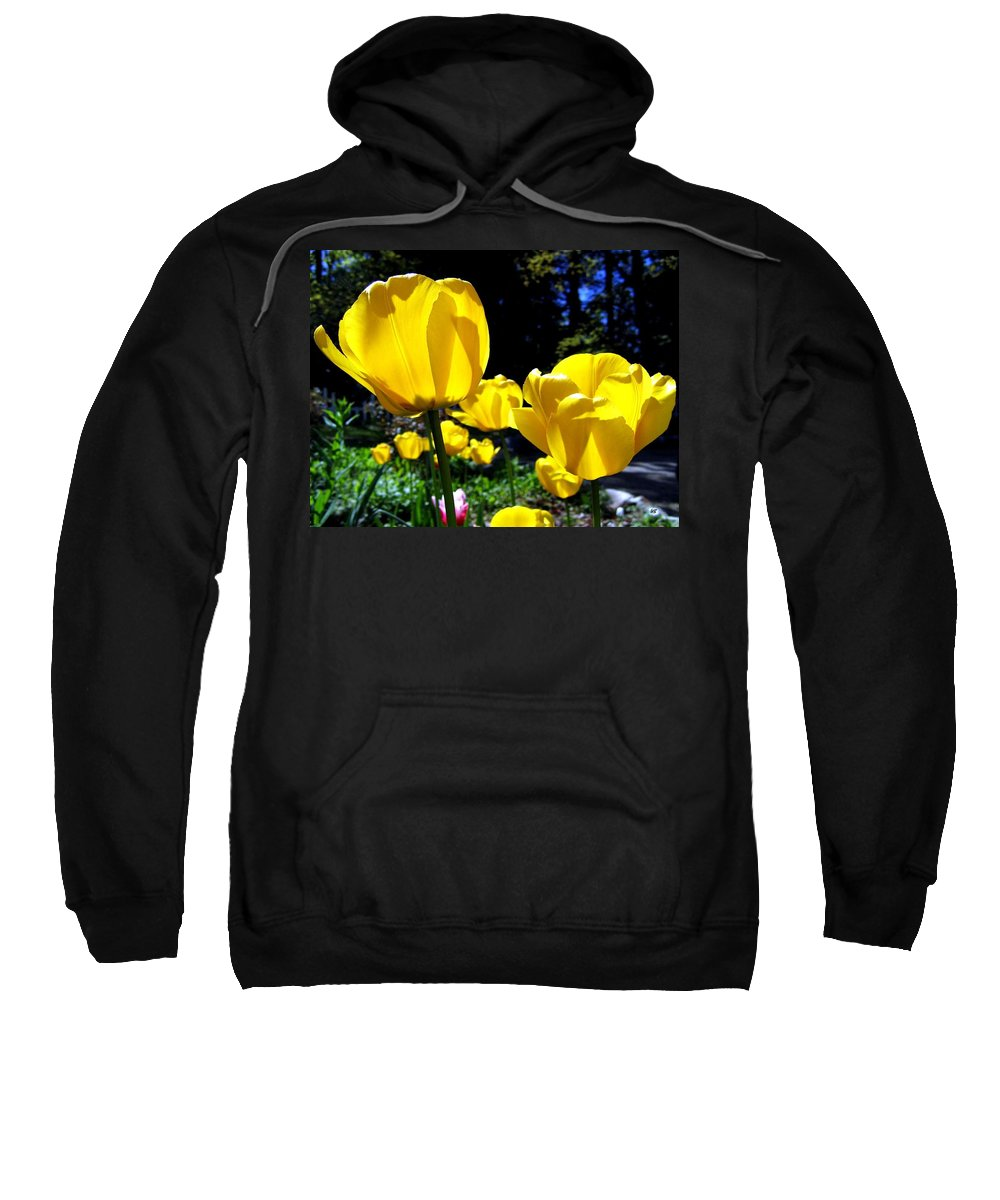 Tulips Sweatshirt featuring the photograph Tulipfest 5 by Will Borden