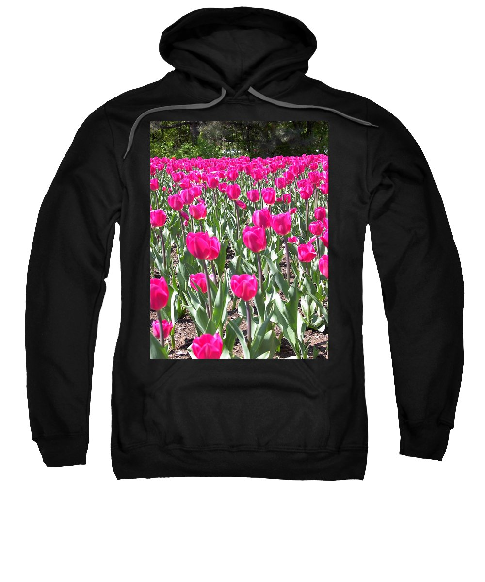 Charity Sweatshirt featuring the photograph Tulips by Mary-Lee Sanders