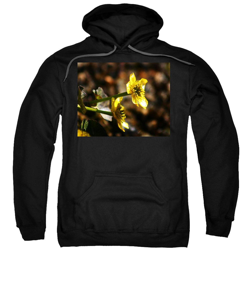 Wild Flowers Sweatshirt featuring the photograph Tundra Rose by Anthony Jones