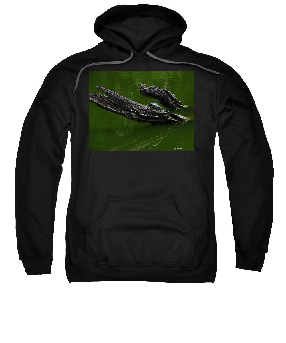 Art For The Wall...patzer Photography Sweatshirt featuring the photograph Turtle Art by Greg Patzer