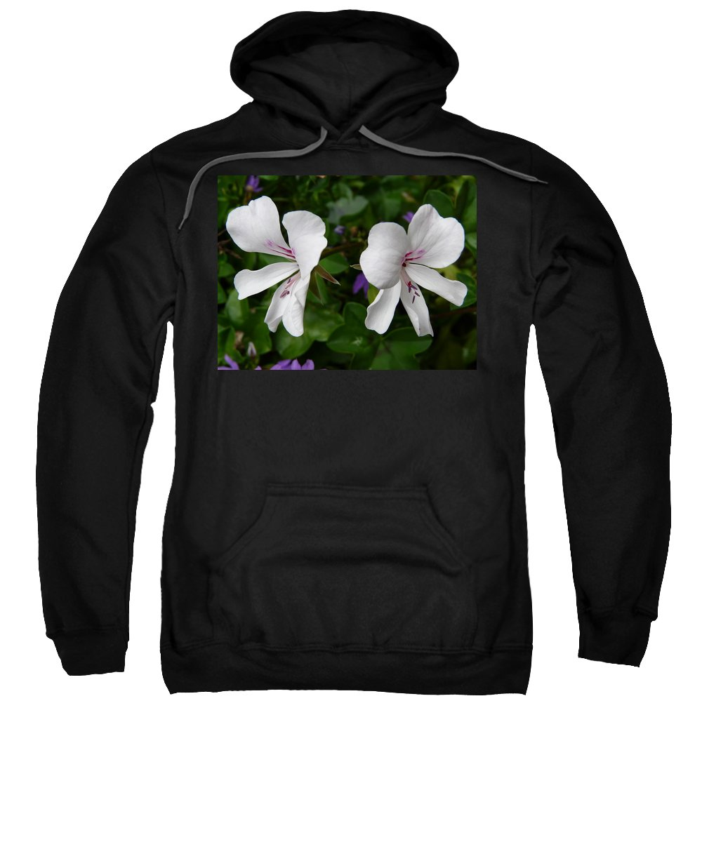 Plant Sweatshirt featuring the photograph Twin Flowers by Valerie Ornstein