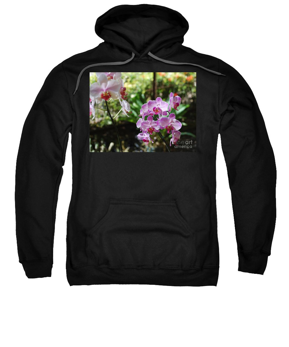 Orchid Sweatshirt featuring the photograph Two Orchid Branches Number One by Heather Kirk