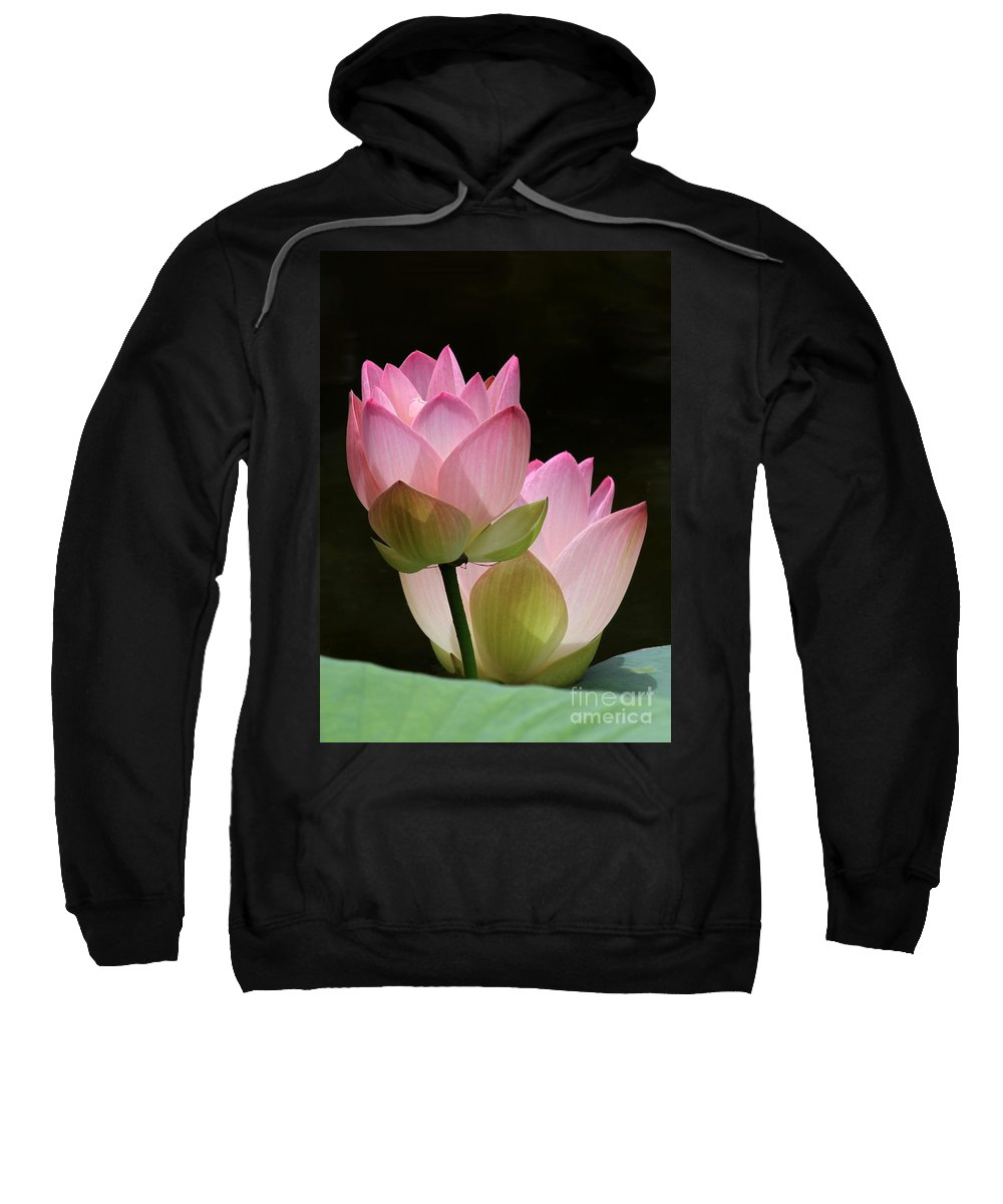 Lotus Sweatshirt featuring the photograph Two Pink Lotus by Sabrina L Ryan
