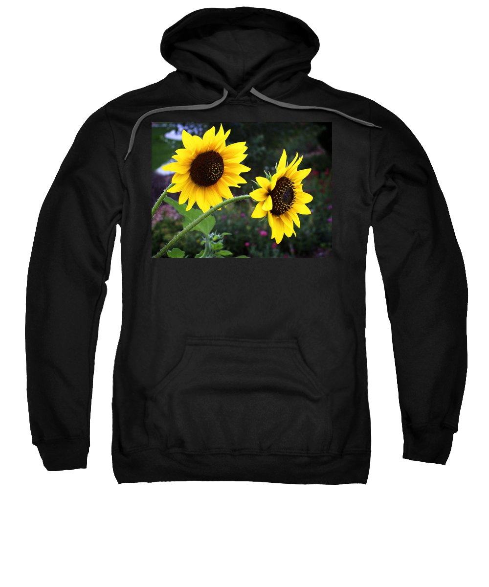 Flower Sweatshirt featuring the photograph Two Sunflowers by Marilyn Hunt
